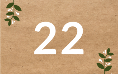 Adventskalender 2020 Türchen 22